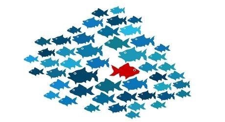 vissen-autisme